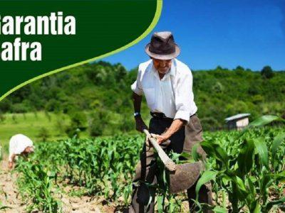 Garantia-Safra autoriza pagamento para agricultores